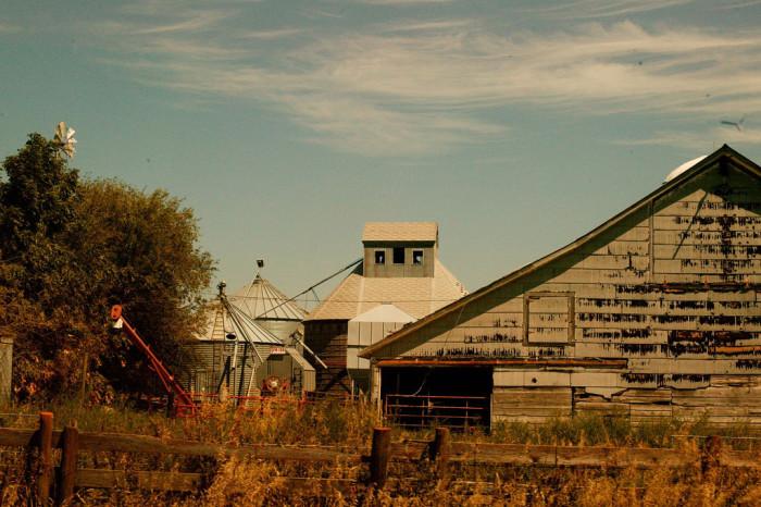 A Classic Farm near Central City
