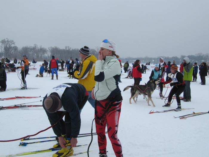 8. Skijor. A sport involving dogs pulling people on skis.