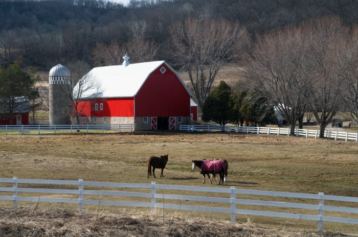 10. This farm near Winona offers a majestic view beyond the adorable animals.