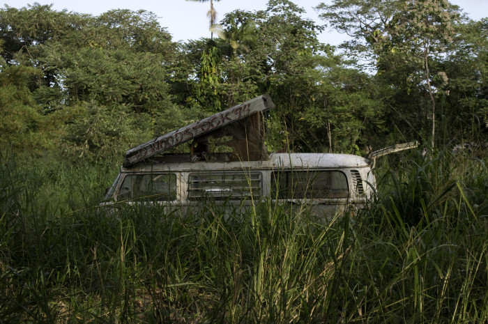 6) Nature is reclaiming this old VW bus.