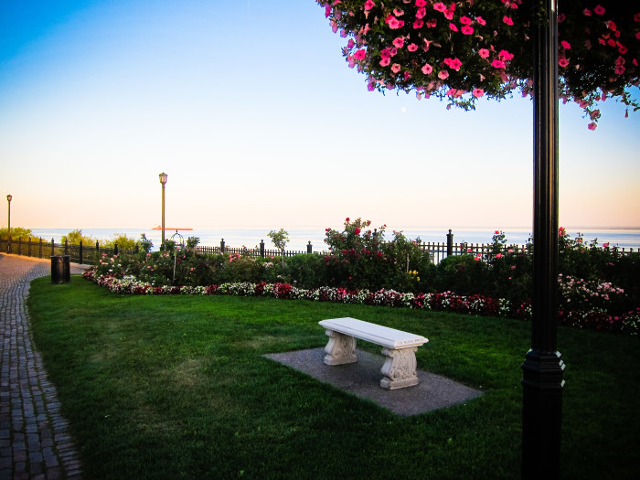 6. Another winning garden is the rose garden in Duluth. Talk about spectacular.