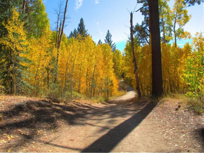 3. Marlette Lake Trail