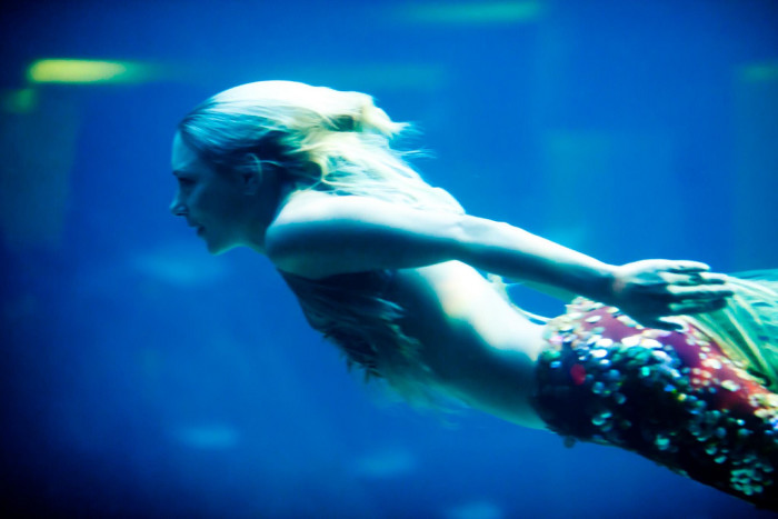 15. If you think you might be a mermaid. Now, don't laugh. Almost everyone I know loves the water here in SC. There are times I think that we should all have fins and be able to breathe underwater here.