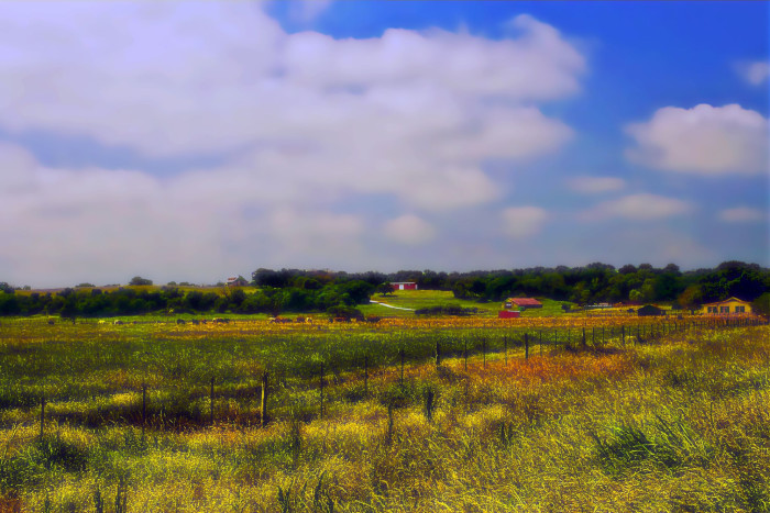 9) The gorgeous countryside and farms in Falls County, TX.