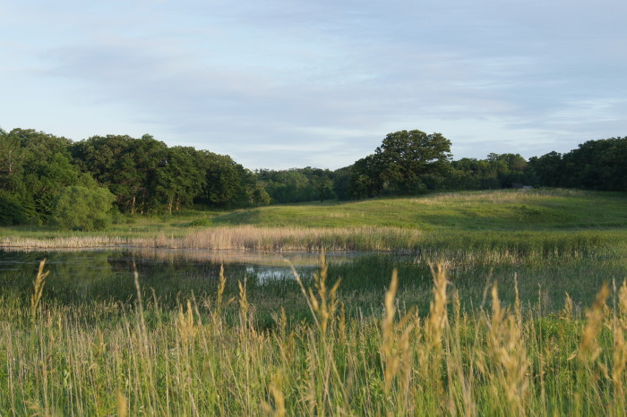 4. With the many rolling hills of Sibley State Park around you, any spot is perfect to drop a blanket.