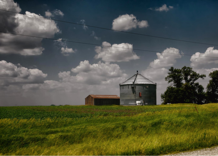 7. This warm and cheerful day on a farm outside of Osage.