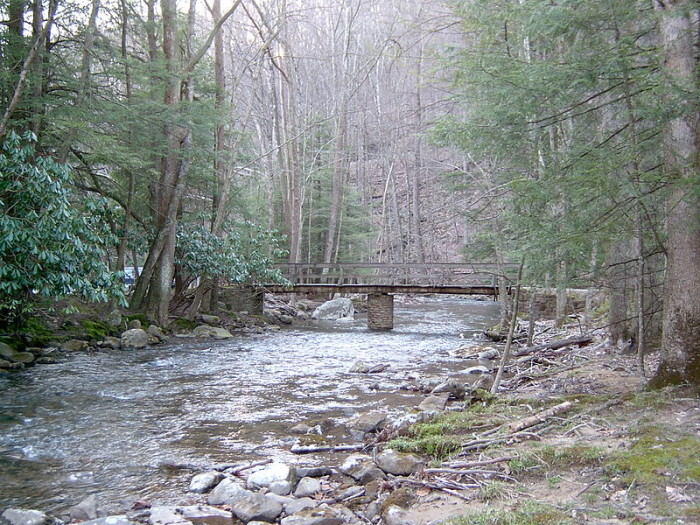 Holly River State Park