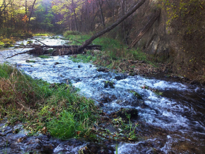 5. Beaver Creek Valley State Park is small but has a beautiful valley and good fishing.
