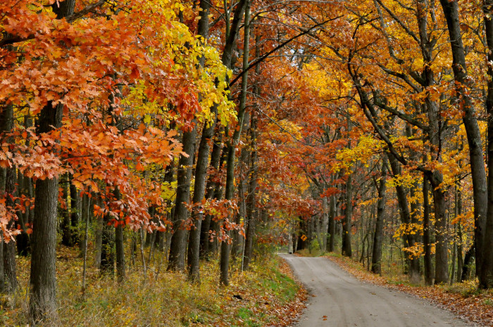 3) Touring the fall colors is an autumn tradition