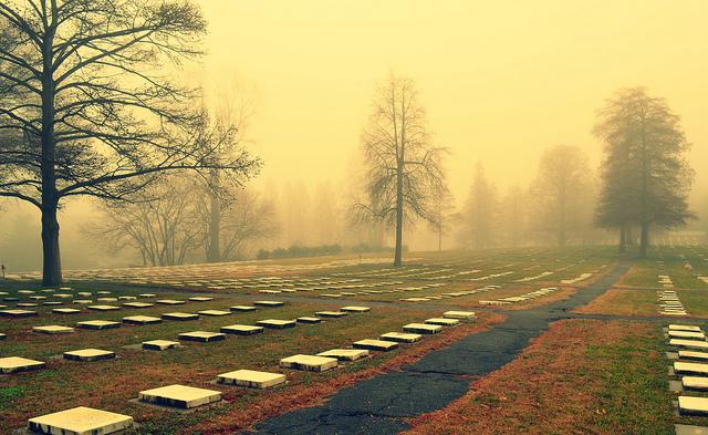 2. Haunting cemetery