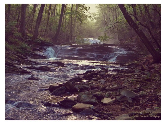 8) A foggy morning on the creek features the sun's rays in such an extraordinary way!