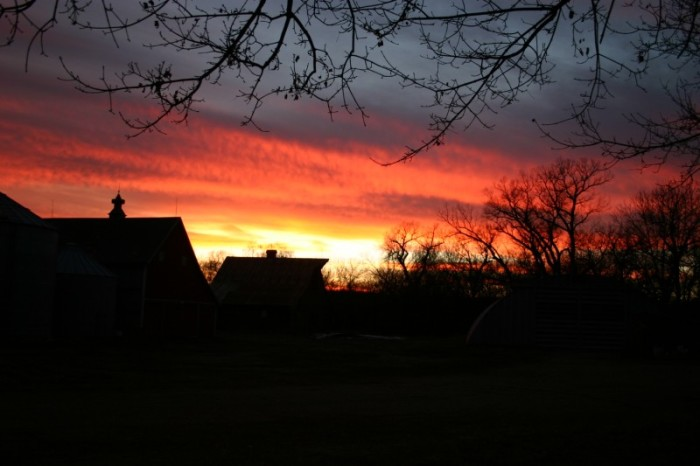 A Christmastime Sunset Over a Farm in Columbus