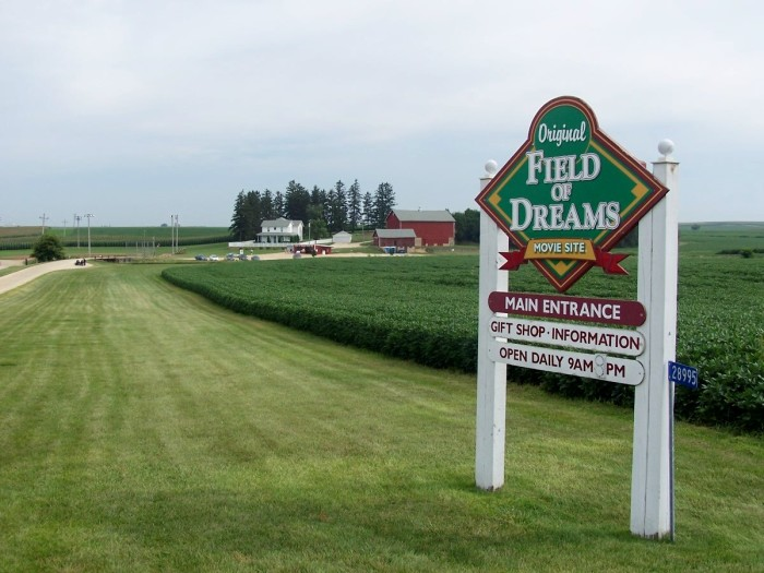 "8. A Copy Of The Movie, ""Field Of Dreams"""