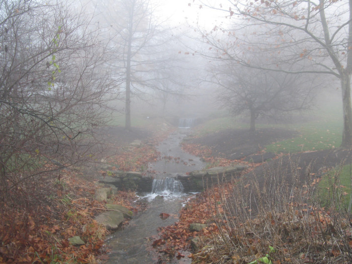 9. There may be something hiding in the fog…