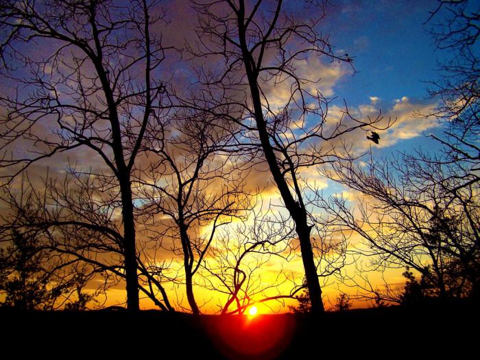 9. Castewood State Park, Ballwin