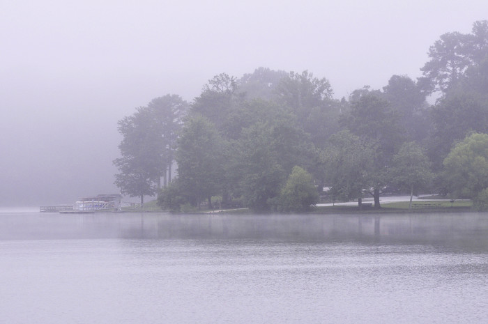 2) A foggy morning in Cobb County looks magical.