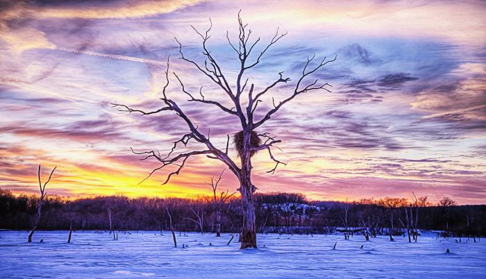 4.) Clinton Lake Winter Wonderland