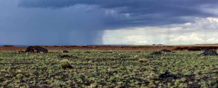 17. Rain looks like wispy hair from afar. This was taken on the Navajo Nation.