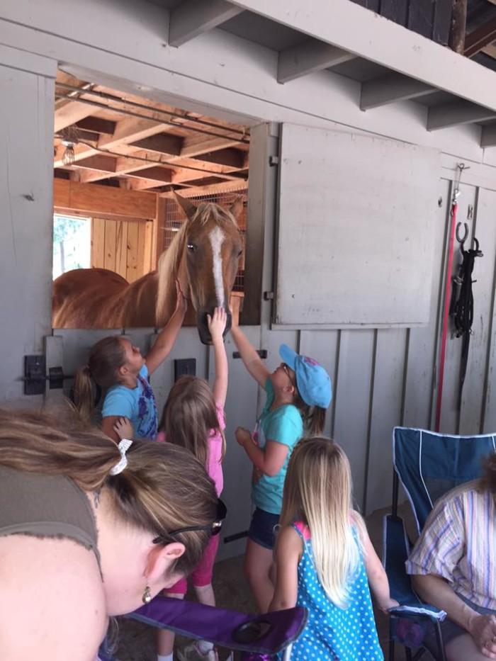 7. Pinchona Farm - Hope Hull, AL