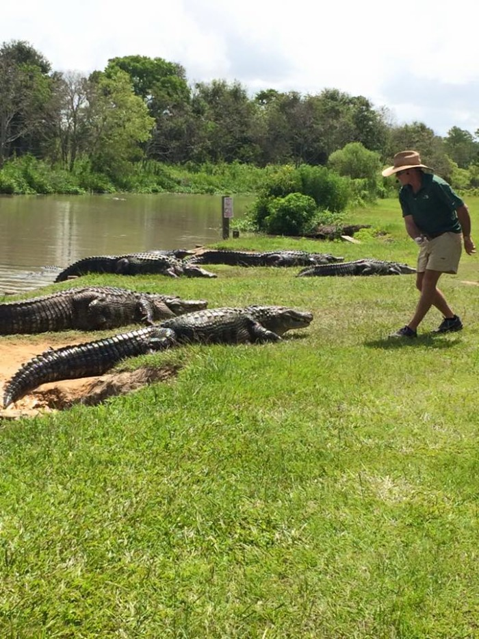 9. Alligator Alley - Summerdale, AL