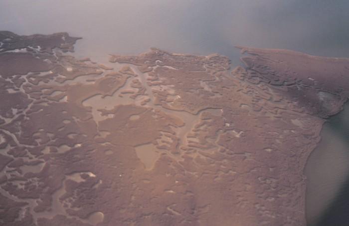 3) Barataria Basin
