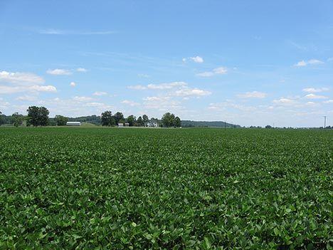 8. Rich Farmland in Barren County