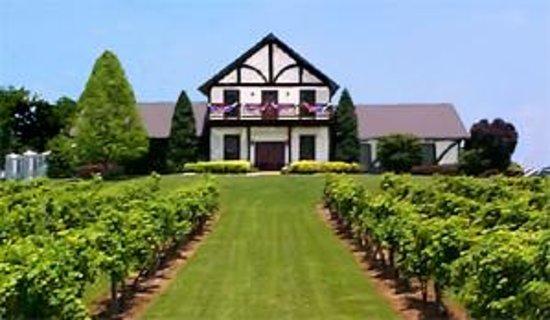 10) Beachaven Vineyards - Clarksville