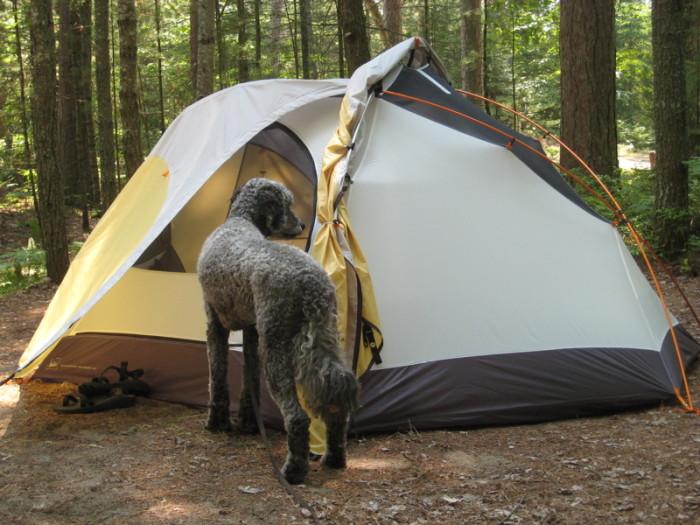 7) Big Knob Forest Campground, Naubinway