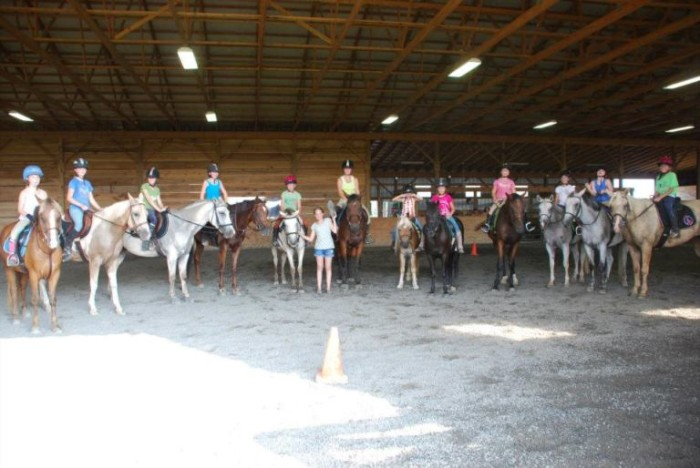 5. Blue Moon Stables