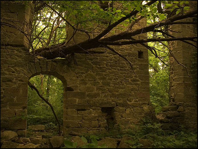20 Photos Of Places In Missouri That Nature Is Reclaiming