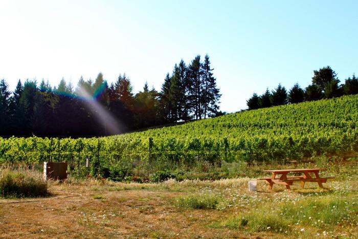 11) Bryn Mawr Winery, Salem
