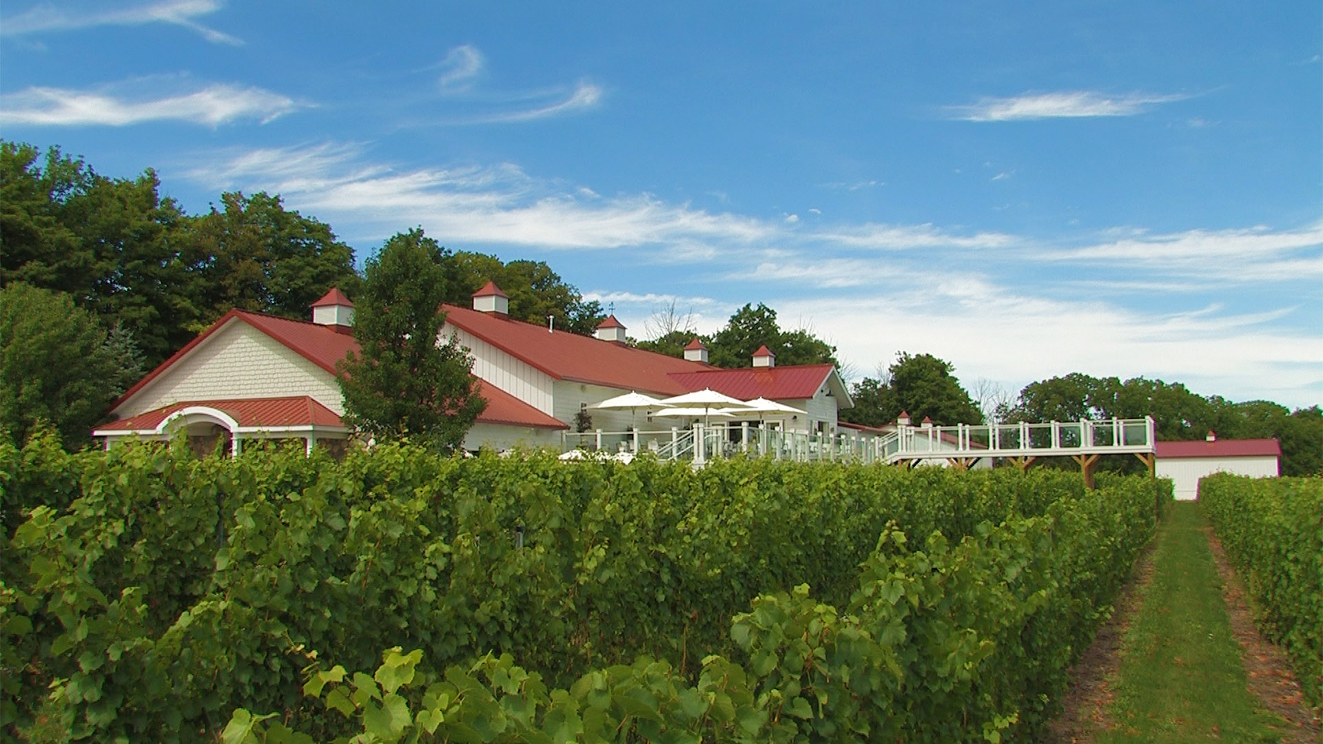 Brys Estate Vineyard Traverse City Mi