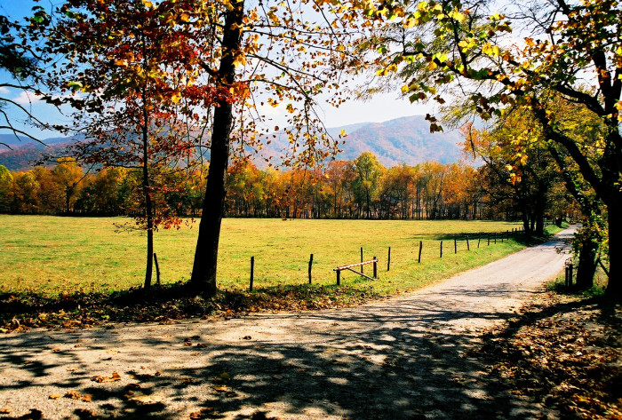 8) Cades Cove Campground - Townsend
