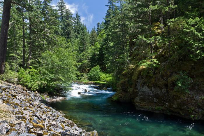 9) Clackamas River