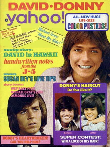 14) Worshipping the Donny Osmond Poster in Your Bedroom