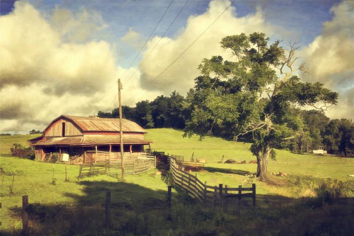 1. Driftwood Farm in Callaway