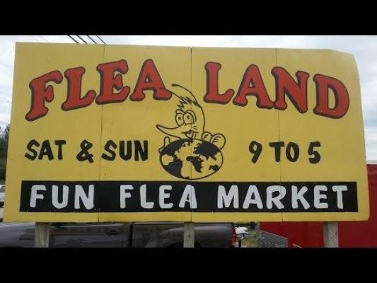 6. Flea Land