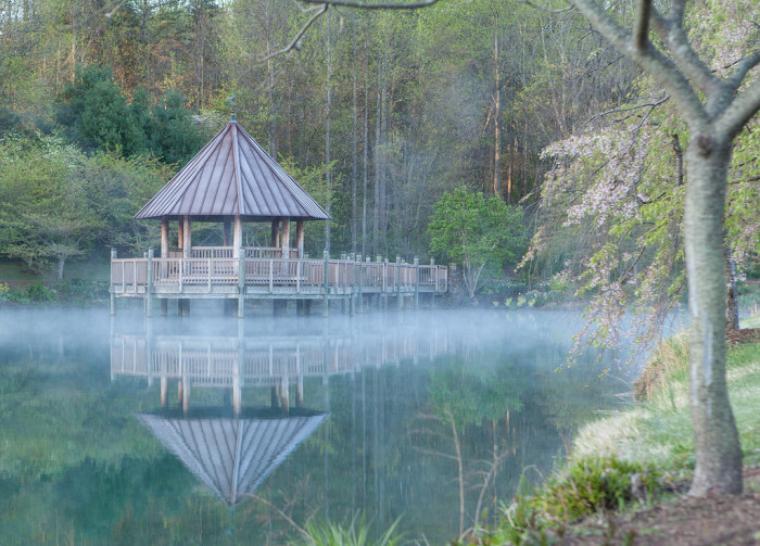 10. Ghostly Reflections at Meadowlark Botanical Gardens in Vienna