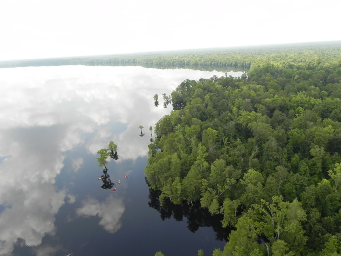 5. Aerial Reflections at the Great Dismal Swamp National Wildlife Refuge