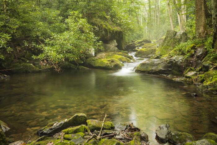 1) Great Smoky Mountains National Park - Gatlinburg