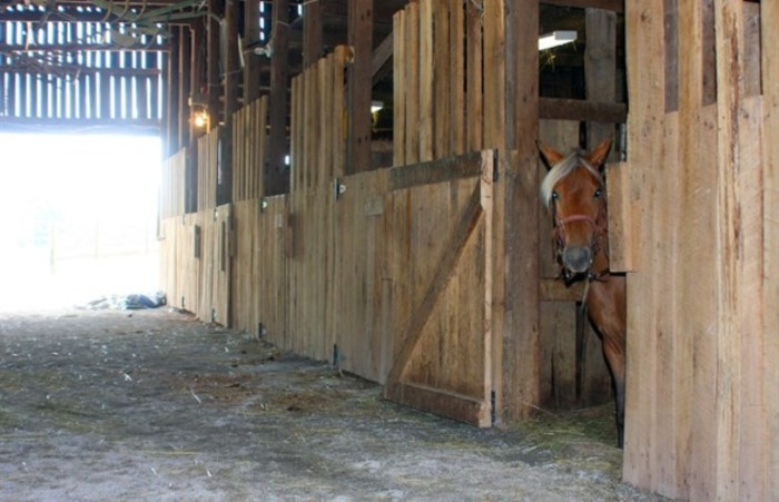 10. Green River Stables