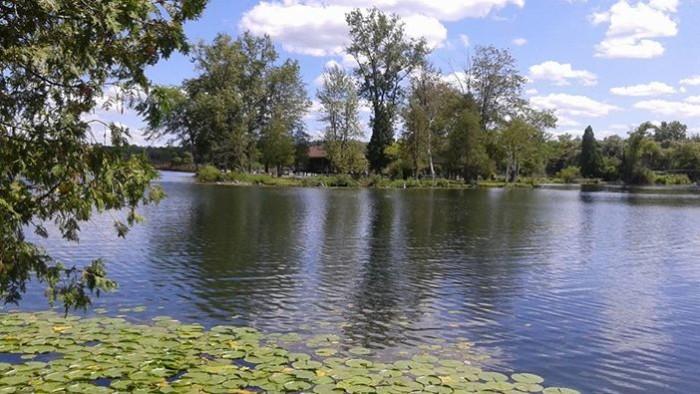 6) Groveland Oaks County Park, Holly