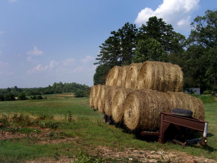10. Hay Bales in Red Oak Hollow