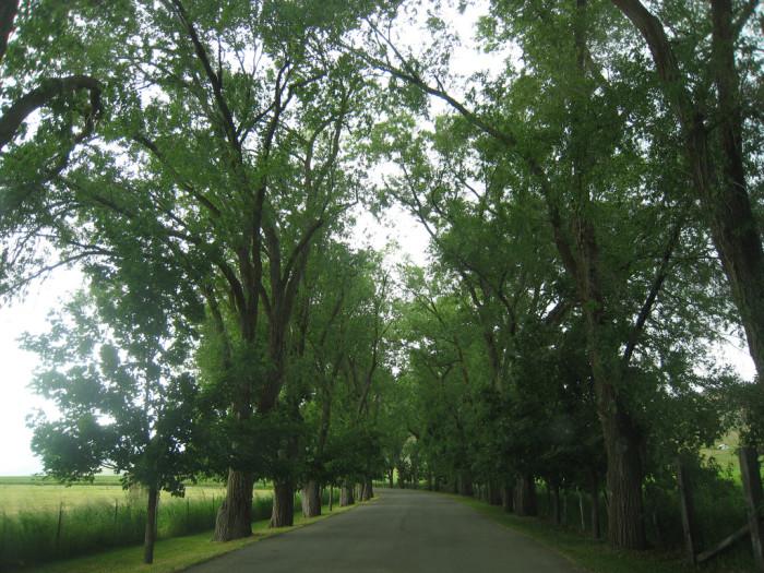 6) Explore Ogden Valley