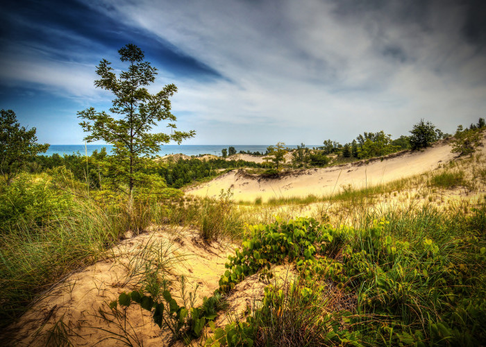 1) Indiana Dunes State Park