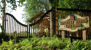 These 10 Beautiful Wineries In Kentucky Are A Must-Visit For Everyone