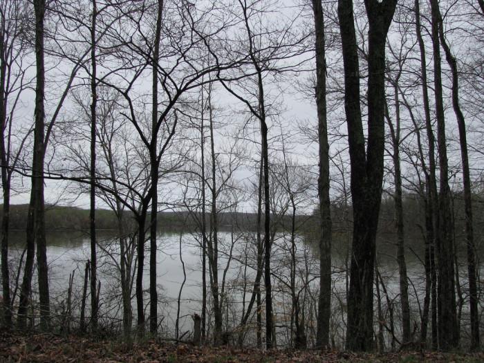 6) Kentucky Lake