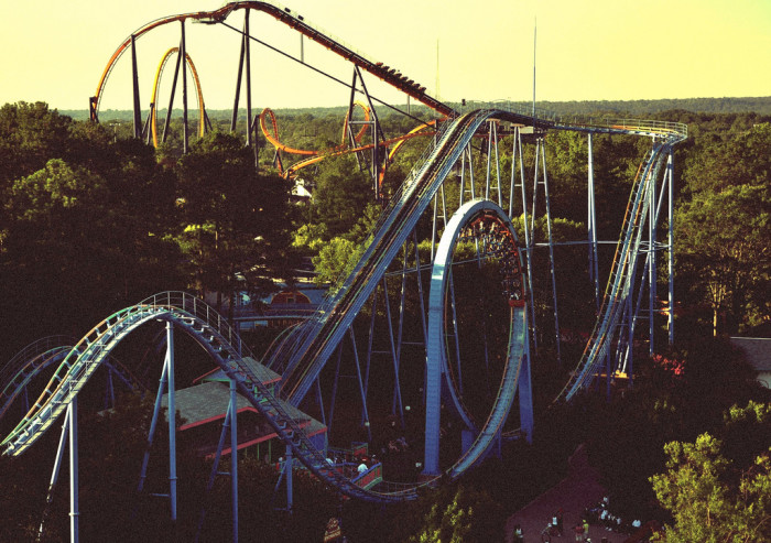 10. Kings Dominion and Busch Gardens were the ultimate in fun.