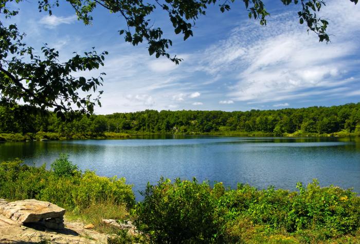 2. Fish, boat or swim at the lake.