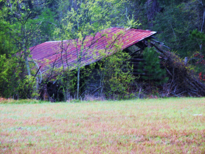4) A falling down barn with a red roof.